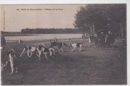 78 Forêt De RAMBOUILLET, Chasse à Courre, L'étang De La Tour - Rambouillet (Kasteel)