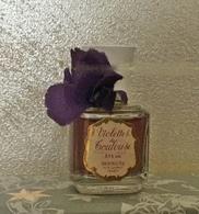 """Ancienne Miniature """"Violettes De Toulouse"""" De BERDOUES 11ml Sans Boite - Vintage Miniatures (until 1960)"""