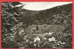 Bad Rippoldsau, Schwarzwald, Mineral- U. Moorbad - Bad Rippoldsau - Schapbach