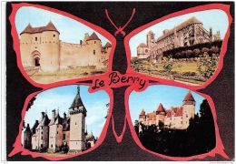 18-LE BERRY-N°C-3307-C/0185 - Autres Communes