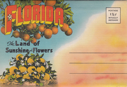 Old Souvenir Folder - Florida - Greetings From Sunny South - 18 Views - Almost Mint Condition - Unused - 4 Scans - United States