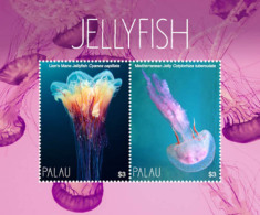 Palau 2018 Fish Marine Life  Jellyfish  I201803 - Palau