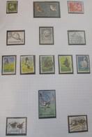 """Thématique """"Oiseaux"""" Timbres Obl. Du Danemark ( 2 Scans ) - Collections, Lots & Series"""
