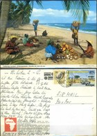 Ak Kenia - Strand - Kokosnussernte - Kenia