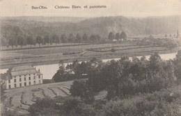 Bas-Oha , Chateau Blanc Et Panorama , ( Laflotte ) - Wanze