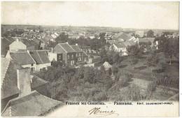 FRASNES Lez GOSSELIES - Les Bons Villers - Panorama - Les Bons Villers