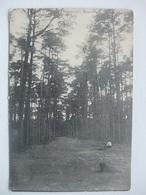 P44 Ansichtkaart Ginneken - Mastbosch - Breda