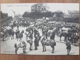 Carhaix.le Marché Aux Chevaux.édition Hamon - Carhaix-Plouguer