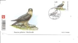 Oiseaux - Rapaces - Faucon Pélerin - Buzin ( FDC De Belgique De 2008 à Voir) - Aquile & Rapaci Diurni