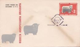 FDC. RIQUEZA AGROPECUARIA URUGUAYA. CORRIEDALE. URUGUAY.-TBE-BLEUP - Uruguay