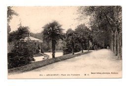 33 - ARCACHON . PLACE DES PALMIERS - Réf. N°8242 - - Arcachon