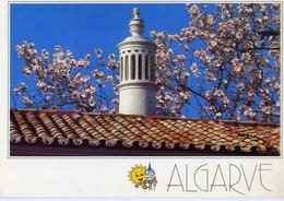 Algarve - Portogal - Formato Grande Viaggiata Mancante Di Affrancatura – E 4 - Cartoline