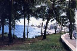 Vista Do Farol Da Cbarra Salvador - Brasil - Formato Grande Viaggiata – E 4 - Cartoline