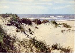 Vesterhavet - The North Sea Die Nordsee - Formato Grande Non Viaggiata – E 4 - Cartoline
