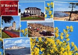 St Brevin Cite Des Mimosas - Formato Grande Viaggiata Mancante Di Affrancatura – E 4 - Cartoline