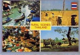 Rural Scenes Thailand - Formato Grande Viaggiata – E 4 - Cartoline