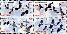 PK0006 Pakistan 2012 Bird Wild Wild Duck 4V MNH - Pakistan