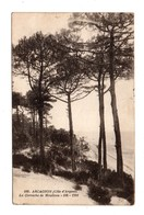33 - ARCACHON . LA CORNICHE DE MOULLEAU - Réf. N°8264 - - Arcachon