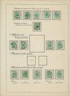 INDRUKWEKKENDE Studie (circa 300 Zegels) Op Nr. 45 Met Variëteiten En Curiositeiten (zie 20 Scans) ! LOT 192 ! - 1869-1888 Lion Couché