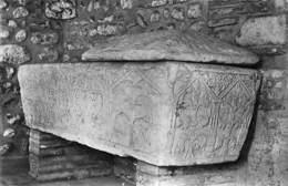 66 - Elne - Le Cloitre Sarcophage Dans Le Cloitre - CPSM - Elne