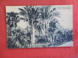 Royal Palms  Panama  Ref 2889 - Panama