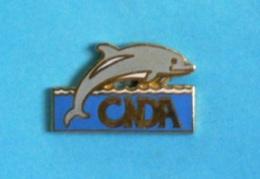 1 PIN'S //   ** C N D A ** DAUPHIN ** ASSOCIATION ** . (© C, Donadey) - Associations