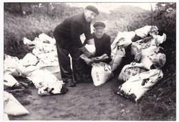 Ancienne Photo Marée Noire Mazout Boehlen Böhlen Octobre 1976 Bretagne Finistère Ile De Sein ? - Personnes Anonymes