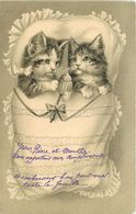 CHAT - CAT - CPA GAUFFREE - ATTITUDE HUMANISEE - édit; E.A.W. 226 - Chats