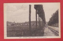 Jussey  -  Avenue De La Gare - France