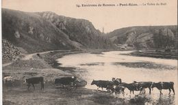 PONT-REAN (35). La Vallée Du Boël. Vaches. Environs De Rennes - Viehzucht