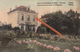 Ecole D'Horticulture De L'Etat -VIVORDE - Staats Tuinbouwschool Te VILVOORDEN - Entrée - Ingang - Carte Colorée, 1910 - Vilvoorde