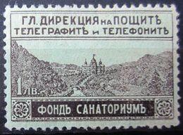 BULGARIE                EXPRESS 1                      NEUF* - 1909-45 Koninkrijk