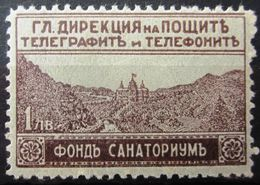 BULGARIE                EXPRESS 2                      NEUF* - 1909-45 Koninkrijk