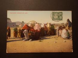 Carte Postale - TUNISIE - Caravane Venant Du SUD (2173) - Tunisia