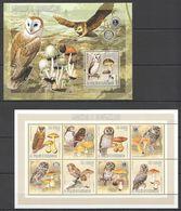 X927 2006 S.TOME E PRINCIPE MUSHROOMS COGUMELOS FAUNA OWLS MOCHOS 1KB+1BL MNH - Owls
