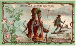 CHROMO CHOCOLAT GUERIN BOUTRON FLEUR ANCOLIE CANADA - Guérin-Boutron