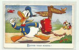 "-* DONALD  DUC    *--""""BETTER  THAN  SCHOOL!   """" . - Disneyworld"