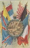 CARTE. 6 DRAPEAUX.. PAS UTLISÉE / 2 - Postmark Collection (Covers)