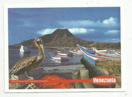 Cp , VENEZUELA , PLAYA  EL TIRANO , ISLA DE MARGARITA ,vierge - Venezuela