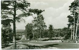 Holten 1965; Toeristenweg Over De Holterberg - Gelopen. (M. V.d. Maat - Holten) - Holten