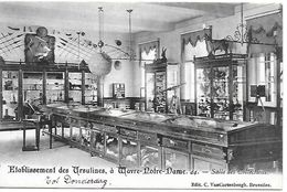 Etablissement Des Ursulines à Wavre-notre-dame, 44, Salle Des Collections, Verstuurd 1905 - Sint-Katelijne-Waver