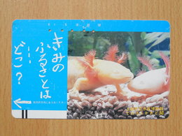 Japon Japan Free Front Bar, Balken Phonecard  / 110-7281 / Animals - Japan