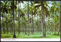 USA United States Honolulu Hawaii 1985 / Coconut Grove, Kauai - Honolulu
