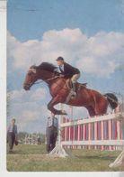 Ippica Cavalli Horse Salto Con Gli Ostacoli Derrage - Horse Show