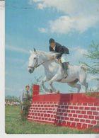 Ippica Cavalli Horse Salto Con Gli Ostacoli Derrage - Hípica