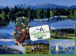 Konigsloge Vor Den Alpen - Sudliches Allgau - Formato Grande Non Viaggiata – E 3 - Cartoline