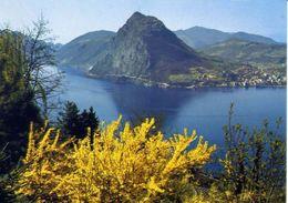 Lugano - Und San Salvatore - Formato Grande Viaggiata Mancante Di Affrancatura – E 3 - Cartoline