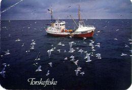 Torskefiske - Norge - Formato Grande Viaggiata Mancante Di Affrancatura – E 3 - Cartoline