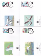 World Wide Fund For Nature 1998 Bosnia Herzegovina,Ciconia, Set 4 Official First Day Covers - FDC