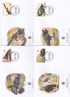 World Wide Fund For Nature 2004 Lesotho,Southern Bald Ibis,Set 4 Official First Day Covers - FDC